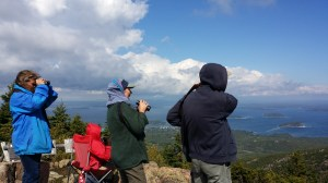 From left to right, Angi King Johnston, science associate at the Schoodic Institute, and volunteers Anne Donovan, seated in red, Elaine Zeitlin, standing with binoculars, and David Zeitlin, search for migrating raptors from atop Cadillac Mountain.