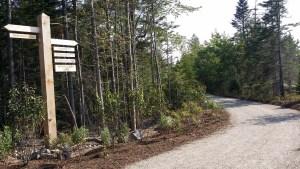 schoodic woods campground