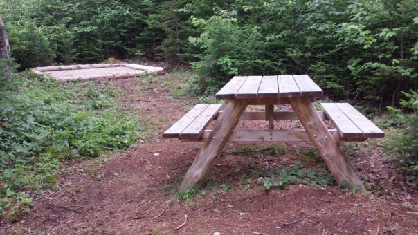 The H-3 hike-in camp site at the Schoodic Woods Campground at Acadia National Park.