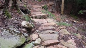 Pink granite steps on the Deer Brook Trail in Acadia National Park