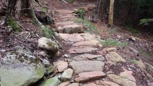 Pink granite steps on the Deer Brook Trail in Acadia National Park