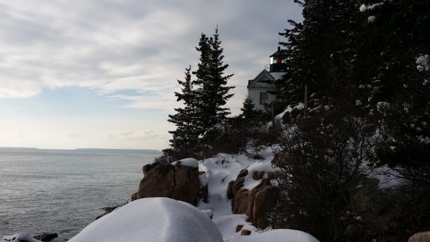 acadia in winter