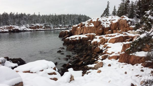 The Ship Harbor Trail in winter in Acadia National Park