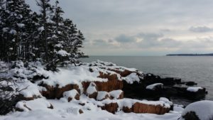 Snow-clad Ship Harbor Trail in Acadia National Park.