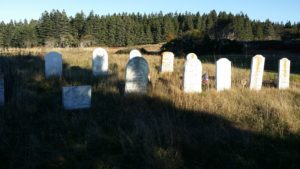 The Gilley family cemetery on Baker Island in Acadia National Park.