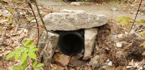 Stones are used to cover the ends of a plastic culvert on Kane Path in Acadia National Park
