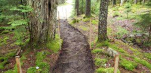 Trail under renovation at Acadia National Park