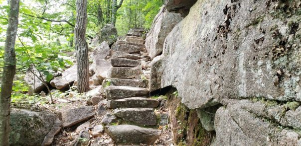 Stone stairway at Acadia National Park