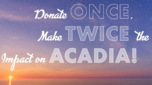 friends of acadia giving tuesday