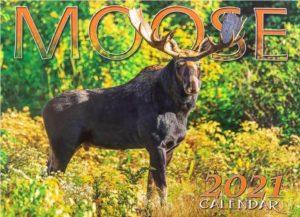 moose calendar