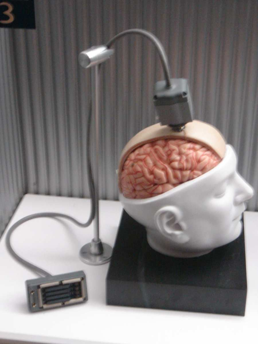 This is a photo of a dummy BrainGate interface which was at the Star Wars exhibition at the Boston Science Museum in October 2005.