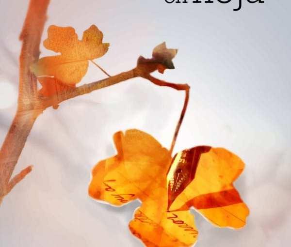 Otoño Amarante-Narrativa y poesía. El escaparate que nos llega (I)