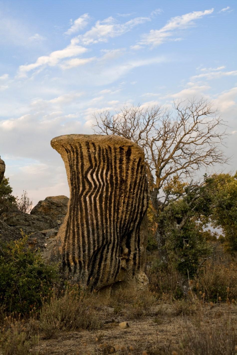 Ibarrola en Garoza: Arte y Naturaleza