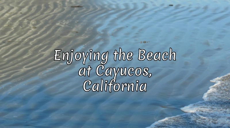 Enjoying the Beach at Cayucos, California