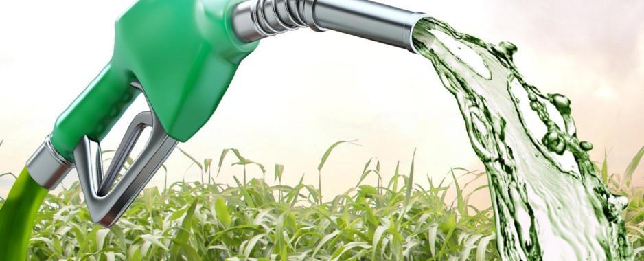 Camex pode salvar ou acabar com etanol brasileiro