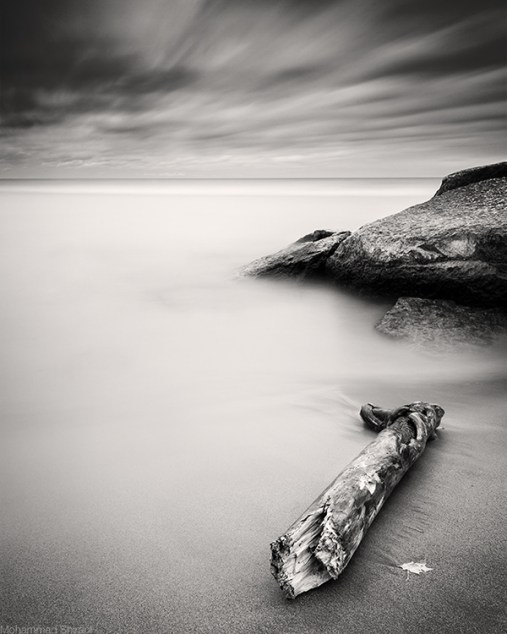 timeless.by.Moe.Shirani.jpg