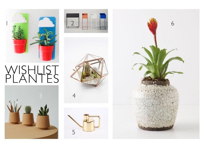 Wishlist Belles plantesV2