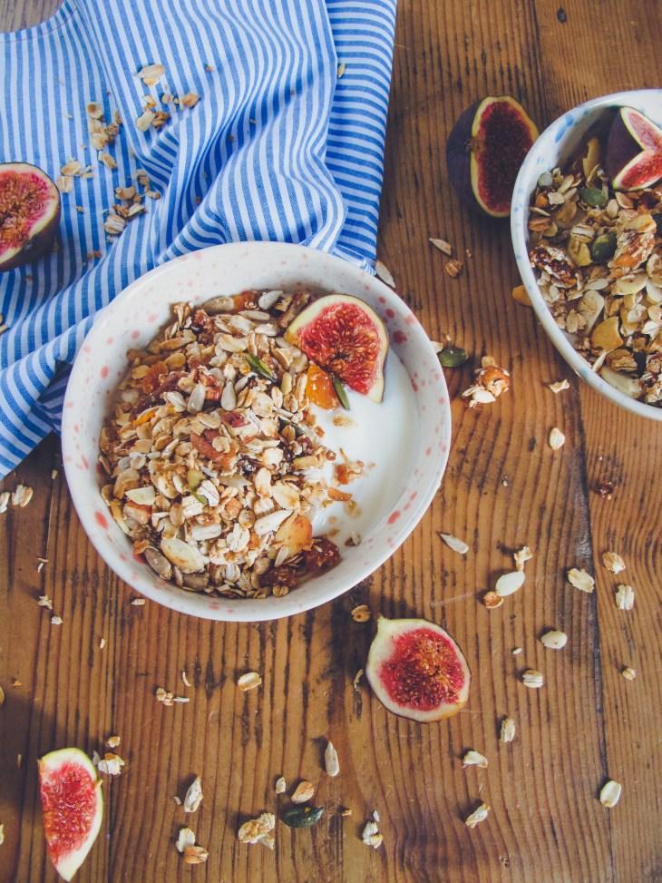 homemade-figs-granola-recipe-2