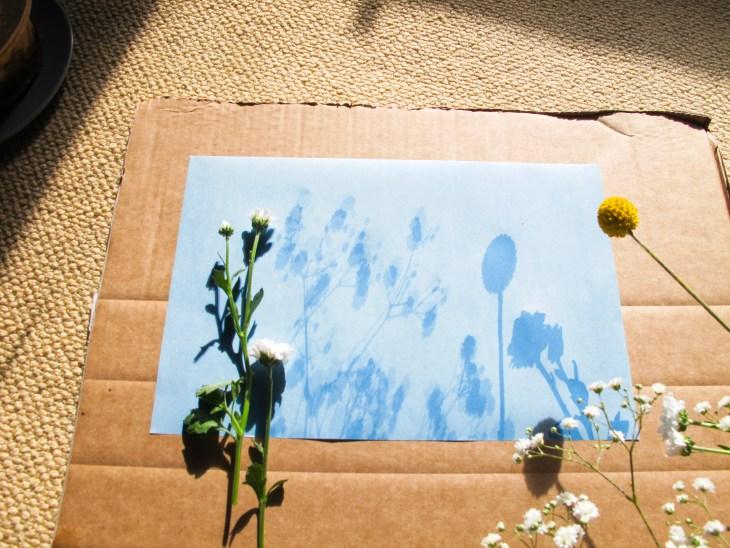 Technique : Faire des impressions grâce au soleil // How to make sunprint // A Cardbaord Dream blog