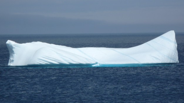 Obligatory iceberg shot, spotted near Cape Spear, NL