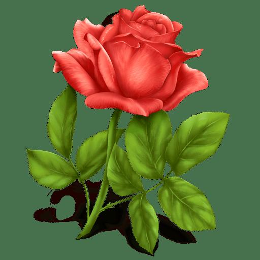 legge di attrazione in amore