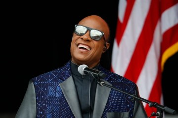 stevie wonder kidney