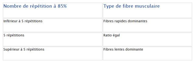 tableau fibres rapides 2