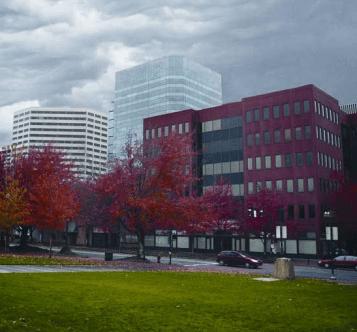 Commercial Window Tint by Suntek 2