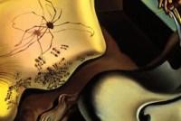 Salvador Dalí. Detall de L'aranya de la nit.