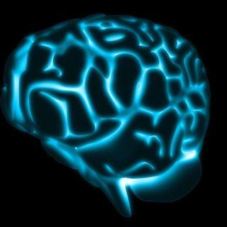 Cerebro, células nerviosas artificiales