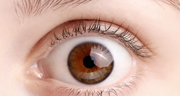 Un estudio concluye que la esclerosis múltiple se puede diagnosticar a través del movimiento de los ojos