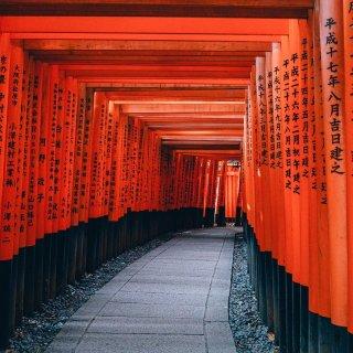 Japón, trastorno del espectro de neuromielitis óptica