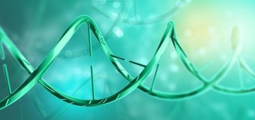 tratamiento de la epidermólisis ampollosa distrófica recibe designación de vía rápida