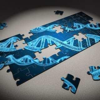 Los datos preclínicos ahora están disponibles sobre TSHA-102 para el síndrome de Rett