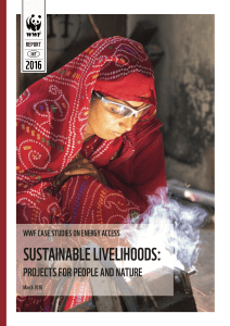 Sustainable Livelihoods Report