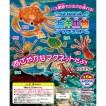 プルプル海洋生物マグネット(全6種)