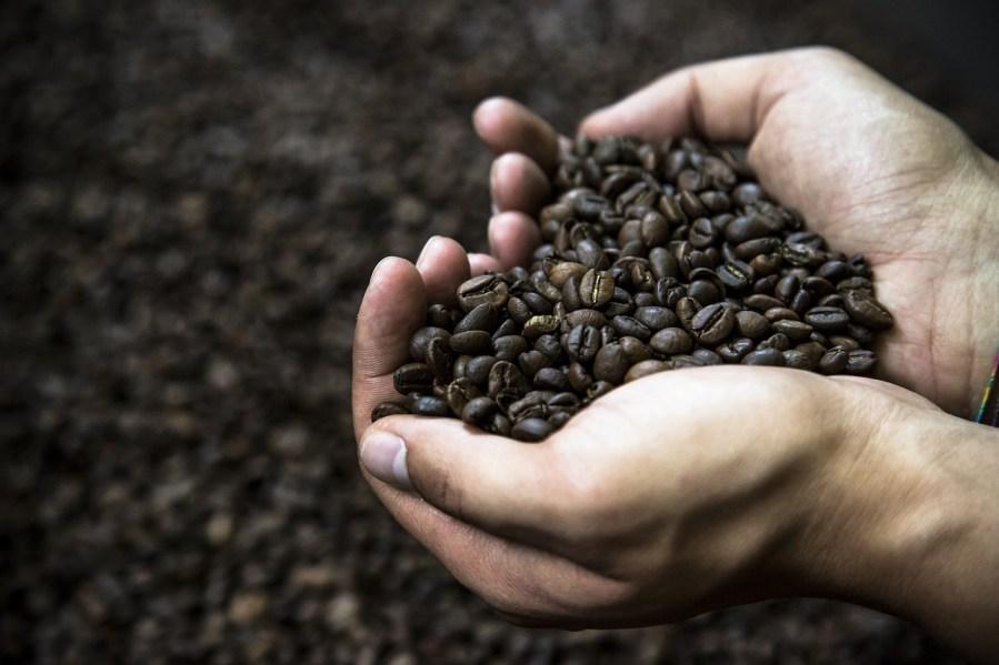 Kawa Lavazza – ponad 120 lat tradycji