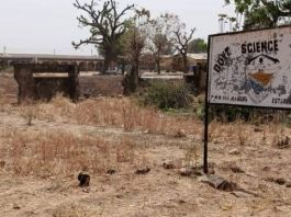 Students from the Government Science College in Kagara, Niger State, who had been kidnapped, have been released.