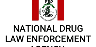 The National Drug Law Enforcement Agency (NDLEA) announced the suspension of the ongoing recruitment screening of applicants.