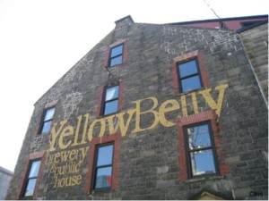 yellowbelly2