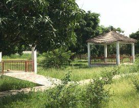 senegal kmc residence patio