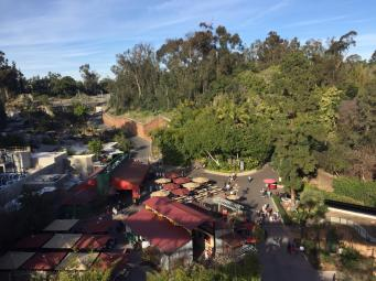 view of the zoo San Diego USA