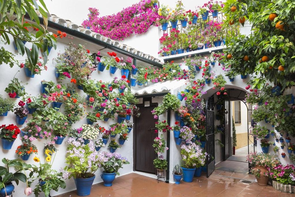 Cordoba patios festival Spain