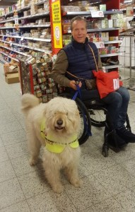 Traveling with Assistance Dogs