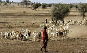 Maasai Tanzania accessible safari