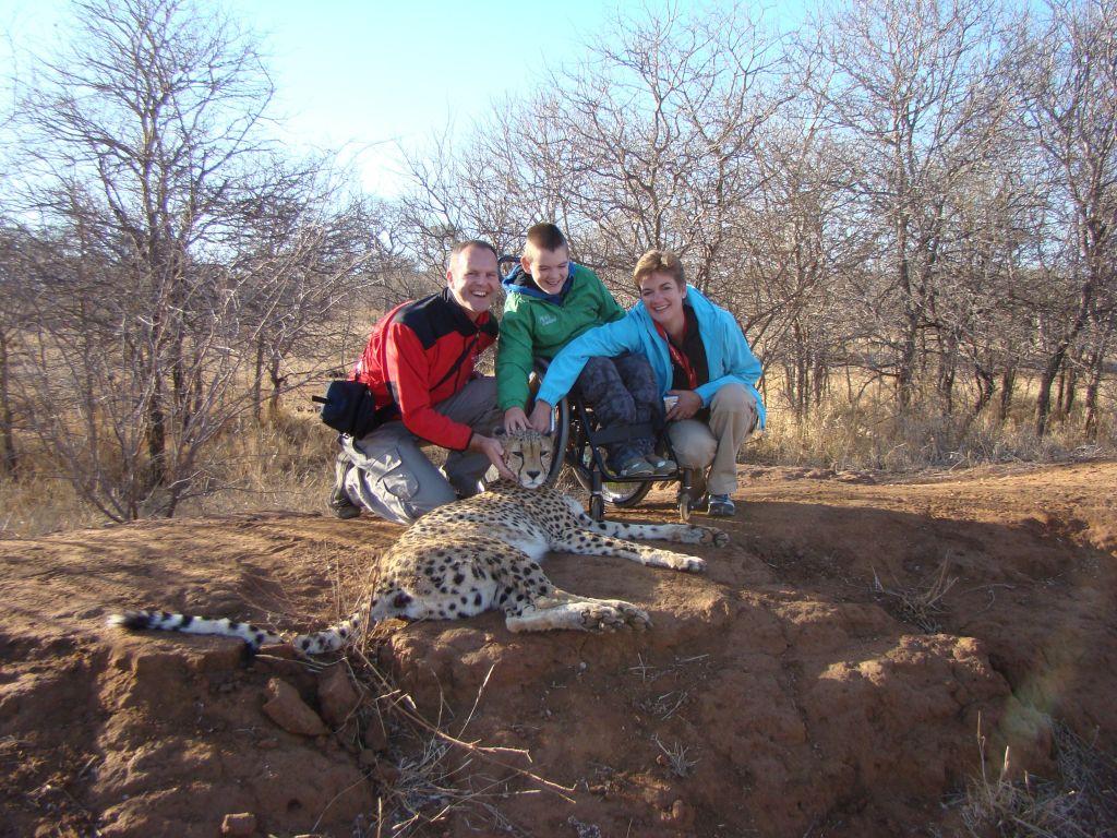 cheetah south africa tour