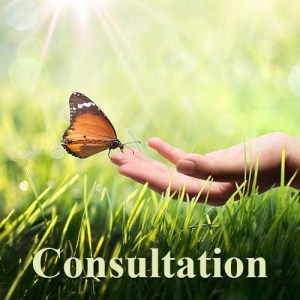 initial consultation, advanced energy healing, medical intuitive,