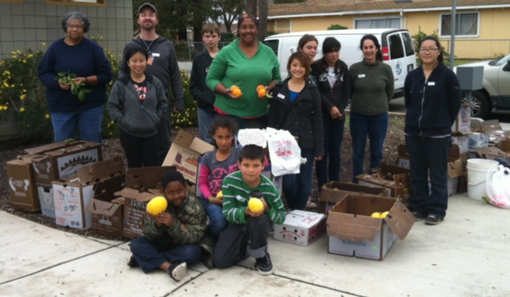 MLK Day Community Citrus Harvest Planned for Oak Park