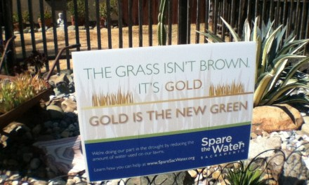 "VIDEO: Drought is Given a Positive Spin; ""Gold is the New Green!"""