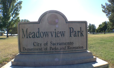 VIDEO: The Meadowview Experience
